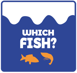 Which Fish czyli Jaka Ryba?